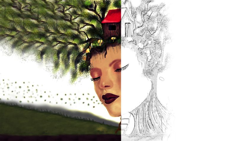 how to draw a treehouse step by step with PicsArt
