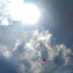 sky summer sunrise fly kite