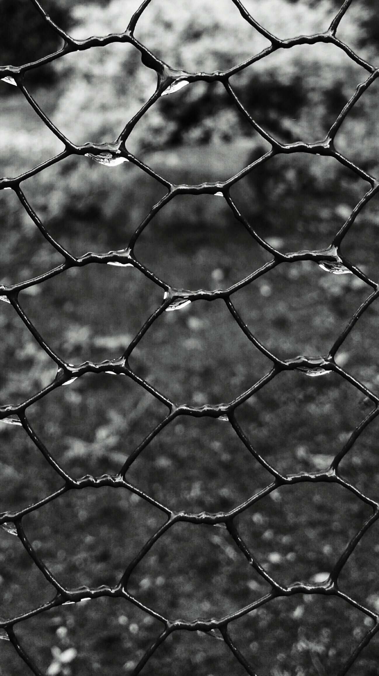 Fence - Black and White Photos by Behindthelight5 on PicsArt