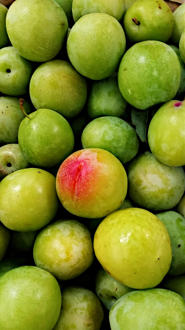 green plums locally grown in our town #limegreen