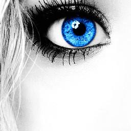 blue eyes art