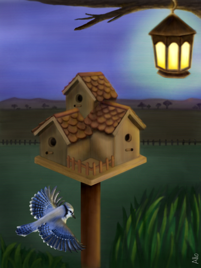 birdhouse drawing contest winner