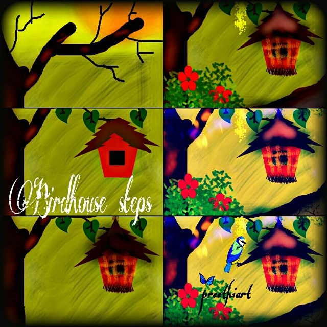 step by step birdhouse drawing