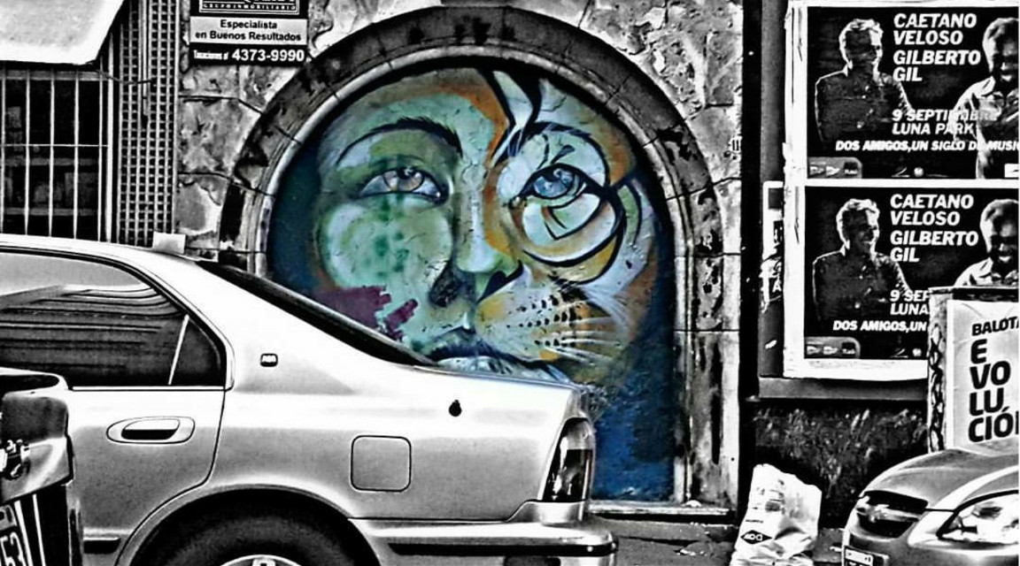 #photography #petsandanimals #tiger #eyes #motion #human