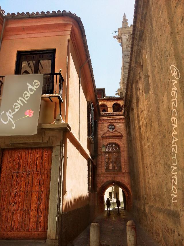 Granada* (Santa Cruz la Real Convent-Santo Domingo Church)