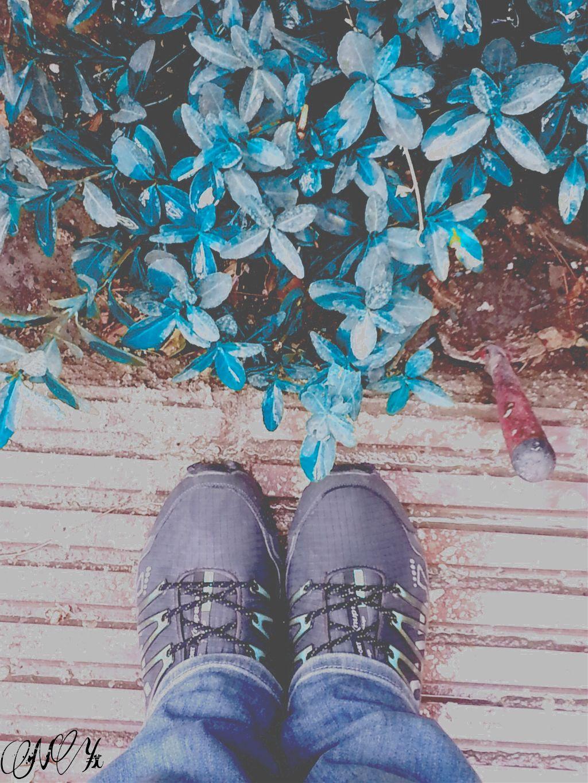 Go blue... #blue #dailyinspiration #colorsplash #nature #photography #summer