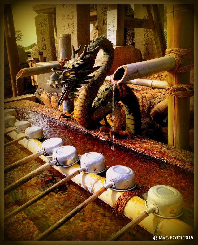 #dragon #forgoodluck #japan