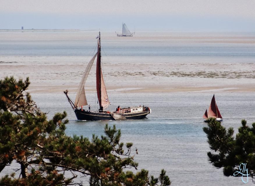Sailing home :) #cinerama #boats #sailing