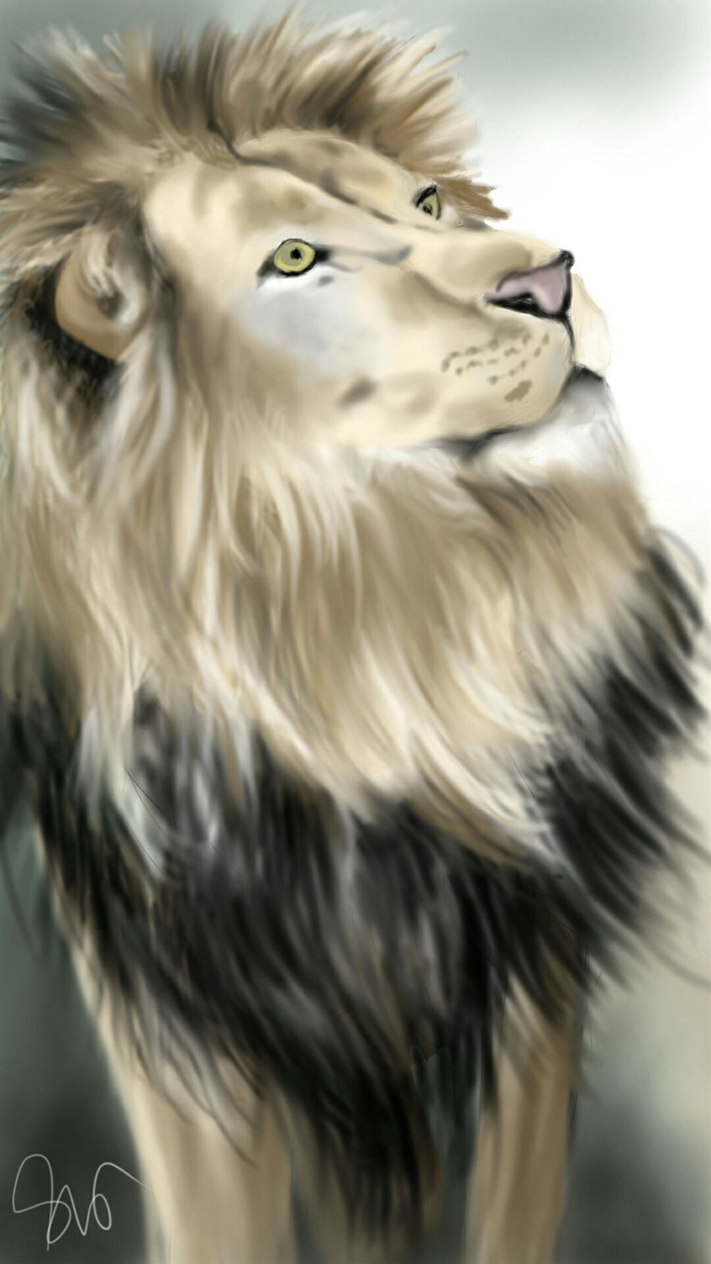 The King #petsandanimals  #drawing  #digitaldrawing   #nature
